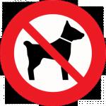 chiens-animaux-interdit-pas-accepté